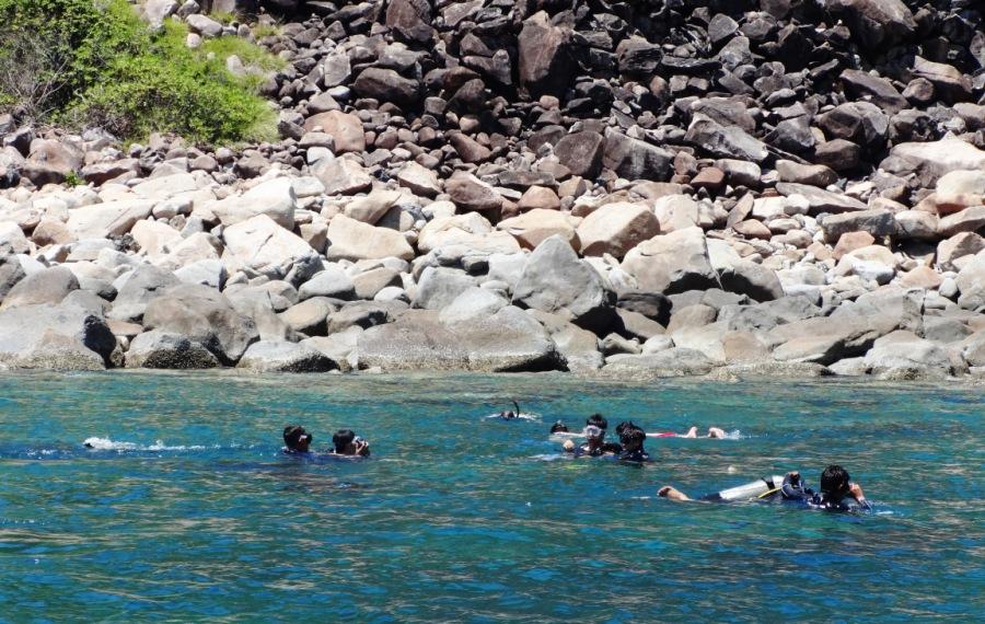 Tour 2 đảo lặn biển Hòn Mun Nha Trang