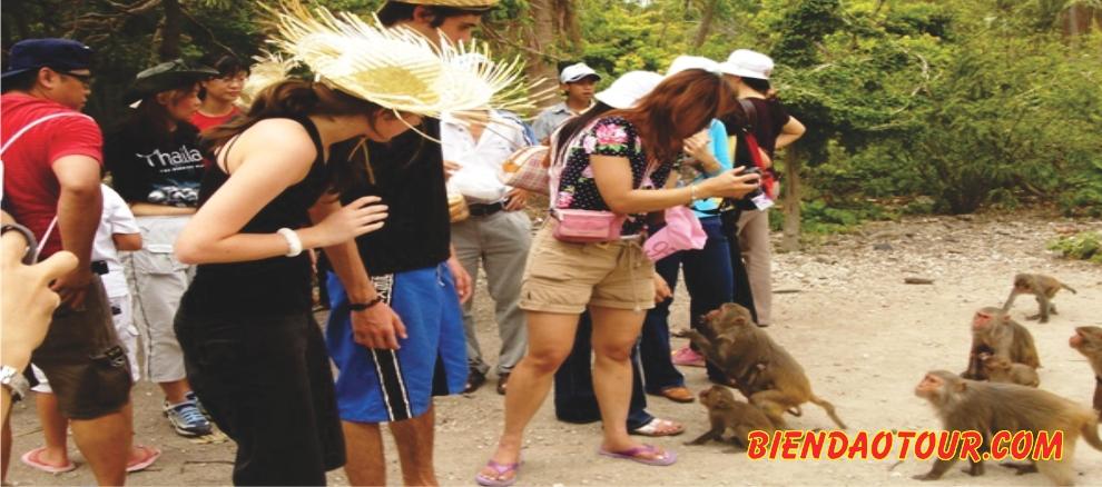 원숭이섬 투어 ( KHỈ 섬 ) & HOA LAN 샘